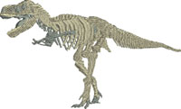 T Rex Skeleton-T Rex, dinosaur, dinosaur skeleton, machine embroidery, skeleton,