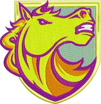 Bronco Brisbane Shield