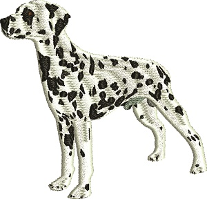 Dalmatian Dog-Dalmation dog dogs machine embroidery
