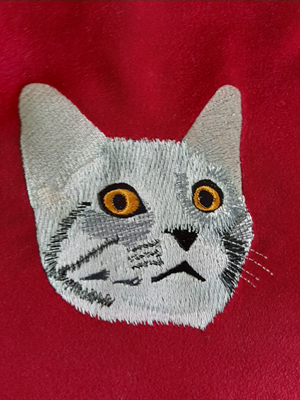 House Cat-Cat, Cats, House Cat, machine embroidery, embroidery designs
