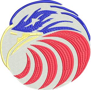 USA eagle-USA, eagle, United States, bird, freedom
